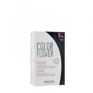 Kit coloration Color flower 570 Plum